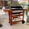 BARBECUE A GAS DOLCEVITA EURO 3 DA INCASSO